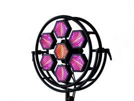 Portman Lights P1 Mini LED - 7 x 3 Watt 1800K + 10 Watt RGBW LED Luminaire