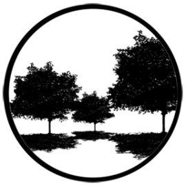 Rosco Tree Silhouette 4 Steel Gobo 78435